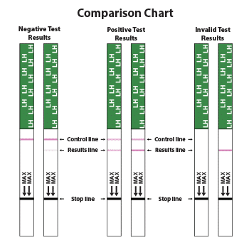 Ovulation Test Strips Comparison Results