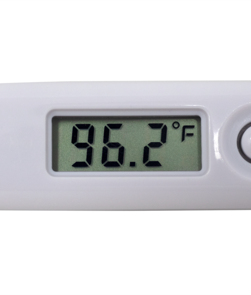 Digital Thermometer Display