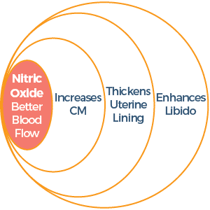 Nitric Oxide Better Blood Flow