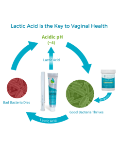 Lactic Acid is the Key to Vaginal Health
