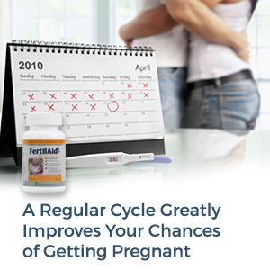 A regular cycle greatly improves your chances of getting pregnant
